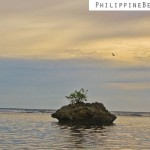 DANJUGAN ISLAND in Negros Occidental