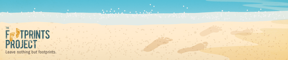 Footprints960x200