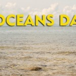Freedom Island Coastal Cleanup on World Oceans Day – June 8!