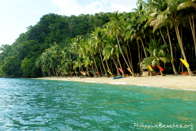 Quick Guide Tuka Marine Park In Kiamba Sarangani