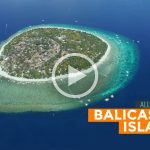 All Drone Up: Balicasag Island in Bohol by Christer Isulat (Video)