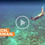 Video: The Great Escape to Coron, Palawan