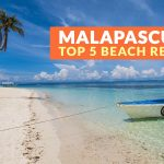 Malapascua Island, Cebu: Top 5 Beach and Dive Resorts