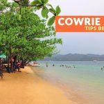 Cowrie Island (Rameysamey Island), Puerto Princesa: Important Tips