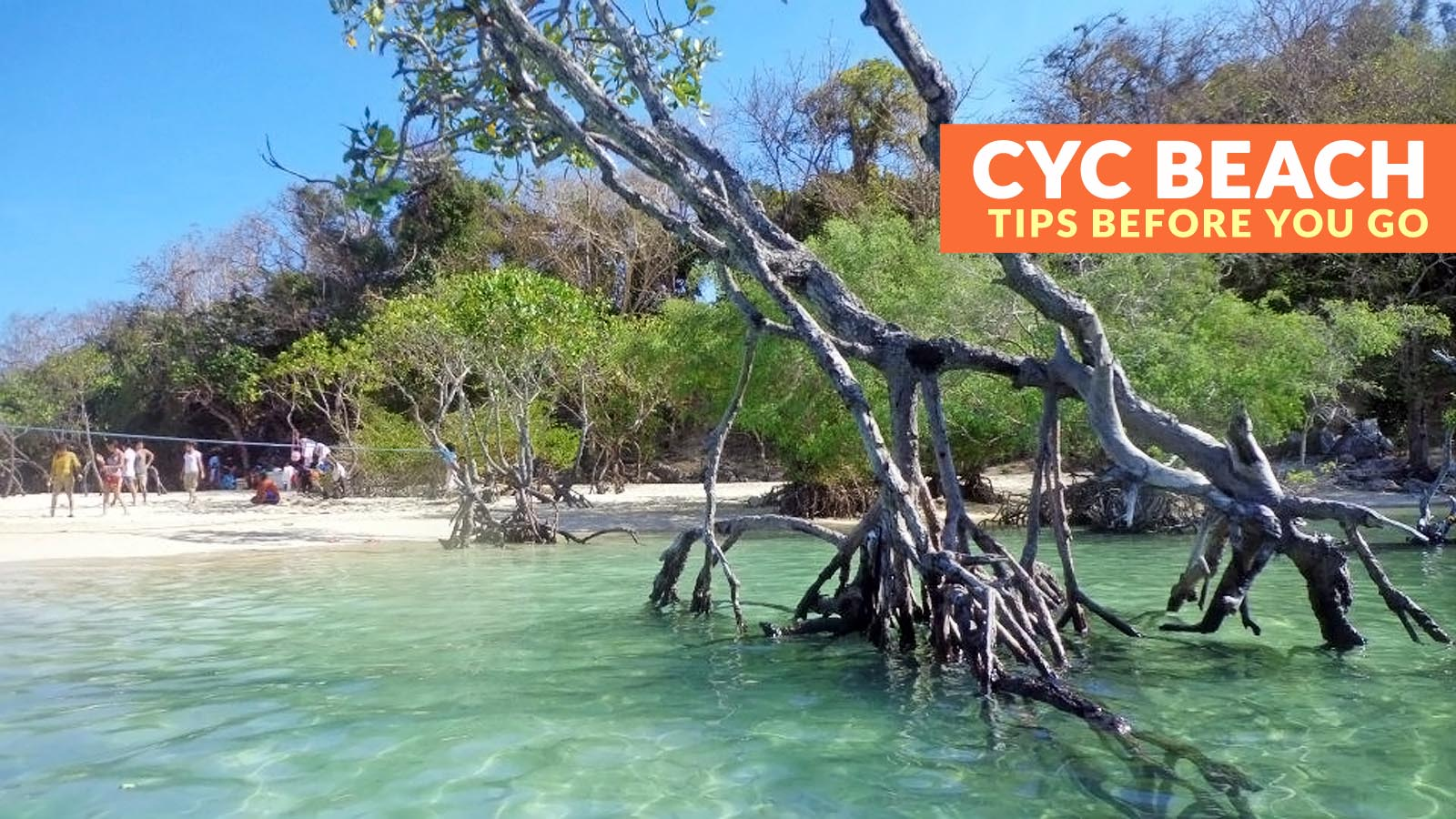 Cyc Beach Coron Important Travel Tips Philippine Beach Guide