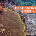 BEST SPOTS TO SNORKEL IN VISAYAS