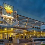 TOP 10 HOTELS IN ALBAY