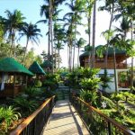 TOP 10 HOTELS IN QUEZON PROVINCE